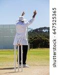 full length of cricket umpire...   Shutterstock . vector #647525365