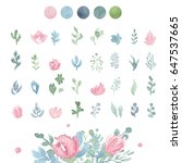 watercolor floral collection... | Shutterstock . vector #647537665