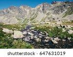 Stream Of Water In Tatra...