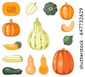 fresh orange pumpkin vegetarian ...   Shutterstock .eps vector #647732629