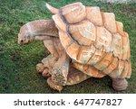 copulation african spurred... | Shutterstock . vector #647747827