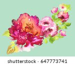 branch of roses on a green... | Shutterstock . vector #647773741