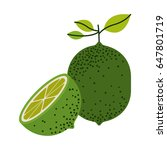 white background with one lemon ... | Shutterstock .eps vector #647801719