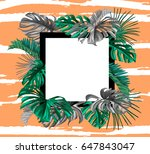 summer card with parrot ... | Shutterstock .eps vector #647843047