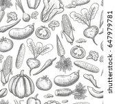 monochrome sketch style... | Shutterstock . vector #647979781