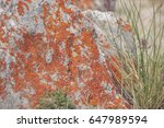 natural rock | Shutterstock . vector #647989594