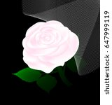 abstract white rose and veil | Shutterstock .eps vector #647999119