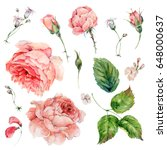 set of vintage watercolor roses ... | Shutterstock . vector #648000637