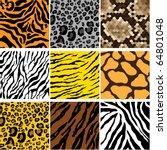 animal skin | Shutterstock .eps vector #64801048