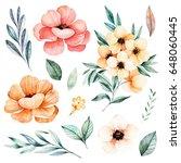handpainted watercolor flowers... | Shutterstock . vector #648060445