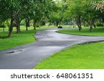 walkway in the green garden... | Shutterstock . vector #648061351