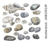 sea stones seashells graphic   Shutterstock . vector #648135139