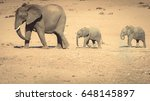 Stock photo mother and two baby elephants 648145897