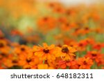 it is orange flowers with...