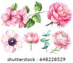 set of flowers watercolor ... | Shutterstock . vector #648228529