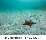 Starfish Underwater Over White...