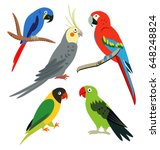 tropical leaves and parrots set  | Shutterstock .eps vector #648248824