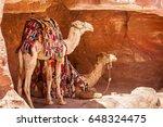 colorful bedouin camels hiding... | Shutterstock . vector #648324475