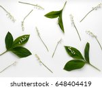 Lily Of The Valley Flowers Wit...