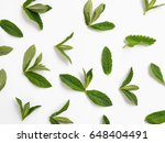 mint leaves isolated on white... | Shutterstock . vector #648404491