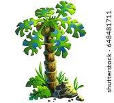 cartoon illustration of a palm... | Shutterstock .eps vector #648481711
