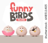 a set of funny birds from a... | Shutterstock .eps vector #648511405