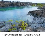 rocky beach in the galapagos... | Shutterstock . vector #648597715