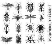 insect stipple drawing set... | Shutterstock .eps vector #648633847