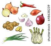 onion  chilly  garlic  ginger ... | Shutterstock .eps vector #648638239