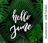 hello june brush lettering....   Shutterstock .eps vector #648714361