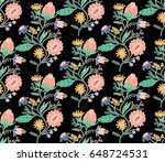 embroidery colorful  ethnic... | Shutterstock .eps vector #648724531