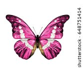 Stock vector pink butterfly with white spots on the wings of the symmetric top view sketch vector graphics color 648751414