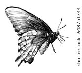 Stock vector butterfly sketch vector graphics black and white drawing 648751744