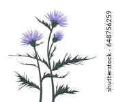 thistle with leaves | Shutterstock .eps vector #648756259