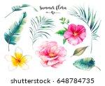 hand painted summer flora set.... | Shutterstock . vector #648784735