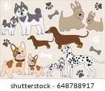 vector various dogs with...   Shutterstock .eps vector #648788917