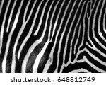 black and white zebra skin with ... | Shutterstock . vector #648812749