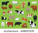 various cow bull cattle poses... | Shutterstock .eps vector #648893539
