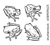 Hand Draw Frog Isolated  Frog...