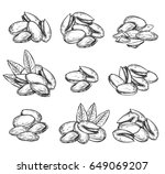 pistachio vector isolated on... | Shutterstock .eps vector #649069207