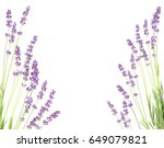 lavender in the interior.... | Shutterstock . vector #649079821