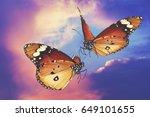 butterflies flight. love... | Shutterstock . vector #649101655