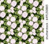 seamless gorgeous pattern in... | Shutterstock . vector #649150885