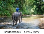 small elephant with his trainer ... | Shutterstock . vector #649177099