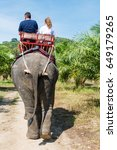 tourists are riding an elephant ... | Shutterstock . vector #649179265