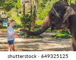 woman feed the elephant in the... | Shutterstock . vector #649325125