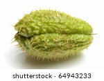 Chayote green vegetable - stock photo