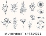 vector collection of hand drawn ... | Shutterstock .eps vector #649514311