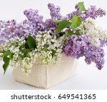 White And Purple Lilac Flowers...