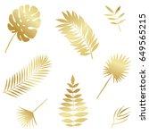 summer tropical palm tree...   Shutterstock .eps vector #649565215